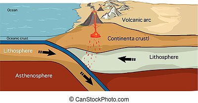 Convergent plate boundary created by two continental plates...