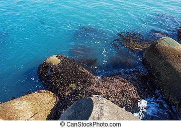 seashore in haeundae sea,Korea