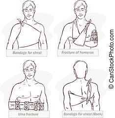Vector illustration of abandage for chest ,fracture of...
