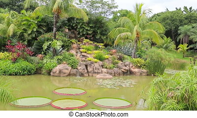 Tropical garden with waterfal
