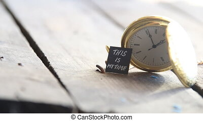 this is my time idea - this is my time text and vintage...