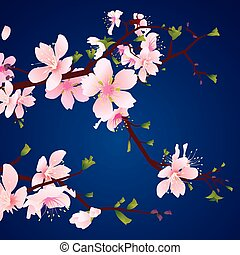 cherry blossom, vector image for design