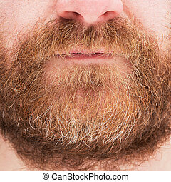 Red beard and mustache man. - Closeup image of the red beard...