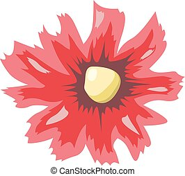 Red flower isolated