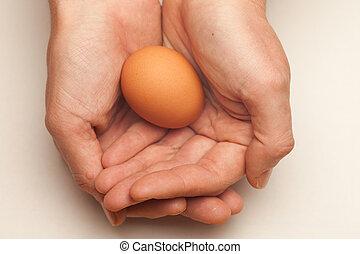 ovo, cupped, mãos