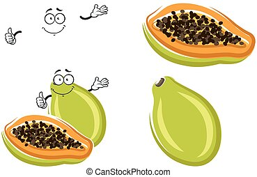 Healthful tropical cartoon papaya fruit - Healthful tropical...