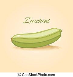 Zucchini  vegetable vector illustra