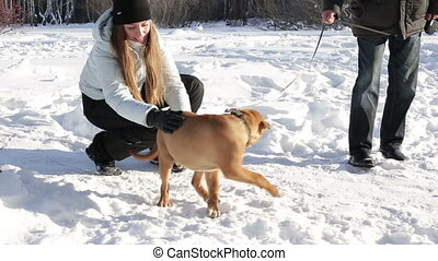 Beautiful woman playing with the dog outdoors in winter landscape