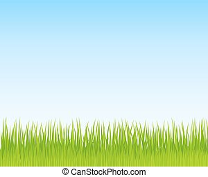 Green grass and blue sky background. Spring nature background for Your design. Vector