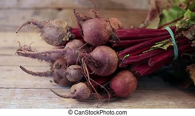 Beetroots - Fresh organic beets just picked from the garden...