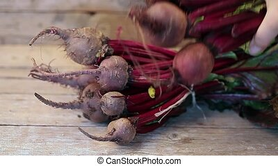 Bunch Of Beetroots - Bunch of raw beetroots just picked from...
