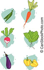 white background vector illustration of a vegetables