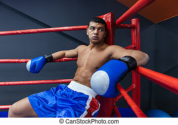 Boxer sitting in boxing ring - Male boxer sitting in the...