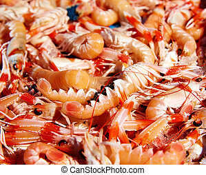 Mediterranean sea crayfish in Javea fish market -...