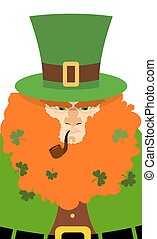 Leprechaun in Green Hat. Portrait serious leprechaun with big Red Beard. Angry leprechaun with smoking pipe. Illustration for St. Patrick's day celebration in Ireland