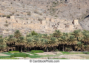 Ruins of an Omani village - Ruins of an Omani oasis village...