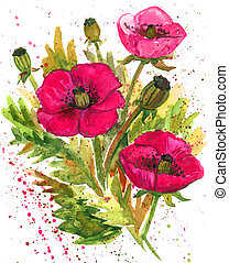 Scarlet Poppies Watercolor Illustration - Red Poppy Flower...