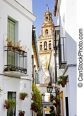Minaret tower of Great Mosque, Cordoba, Andalusia, Spain