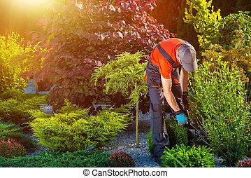 Gardener Garden Works Caucasian Gardener at Work Beautiful...