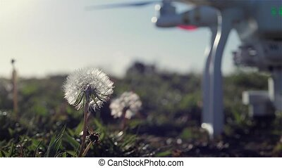 Drone Takeoff Flower Power - Drone taking off from the...
