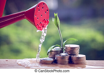 Money and plant with hand with filter effect retro vintage...