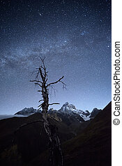 Night landscape in mountains - Starry sky above mountains....