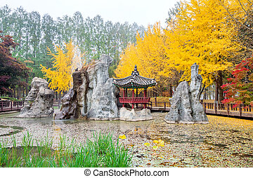 Autumn with ginkgo tree in Nami Island, Korea.