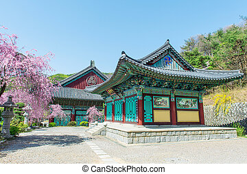 Gyeongbokgung Palace with cherry blossom in spring,Korea