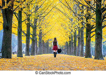 Beautiful Girl with Yellow Leaves in Nami Island, Korea