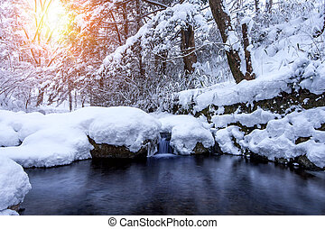 Winter landscape, Waterfall and river on the forest in...