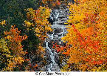 Colorful Autumn creek, White Mountain, New Hampshire