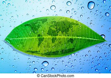 concetto, foglia, ambiente, verde, risparmiare, Terra