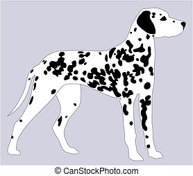 Dalmatian dog - Abstract vector illustration of Dalmatian...
