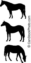 Horses - Abstract vector illustration of horses