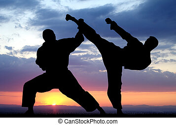 Martial Art - Illustration of martial art demonstration...