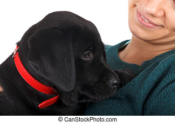 Cute labrador puppy - Picture of a woman with her black...