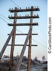 Wooden tower electric transmission line. Power supply...