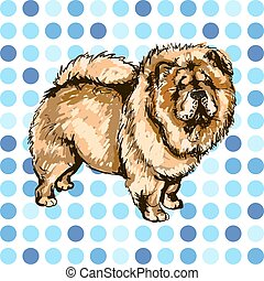 Chow Chow - Illustration of the dog breed Chow Chow