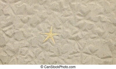 Yellow starfish and her prints blown away by wind Beach and...
