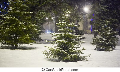 Christmass tree at evening city in snow