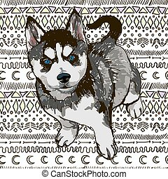 Husky - Illustration of the dog breed Husky