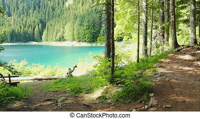 Black lake, Durmitor national park - Black lake in Durmitor...