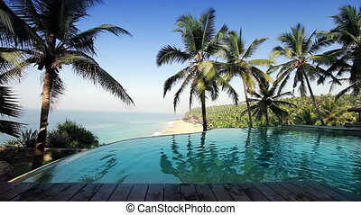 pool on the edge of the rock overlooking the ocean and palm trees