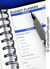 Do the budget planning on the day planner