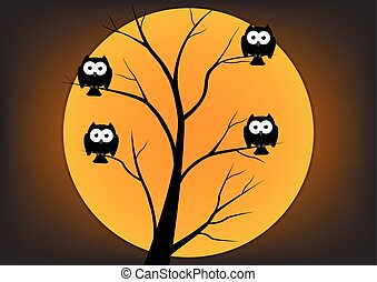 Owl on tree in night