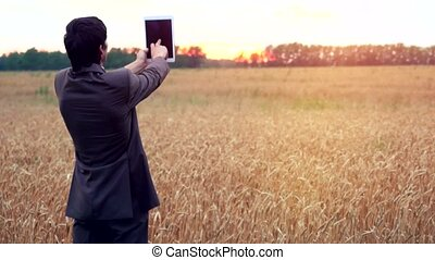 Businessman on a wheat field using a tablet. 4k