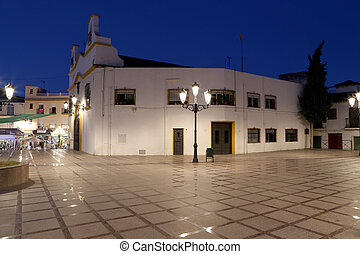 The resort town on the Costa del Sol (Coast of the Sun) at night, Malaga in Andalusia, Spain