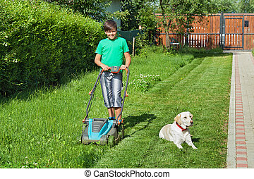 Boy cutting grass in the summer yard - his labrador doggie...