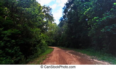Camera Moves along Shadow Ground Road in Tropical Forest