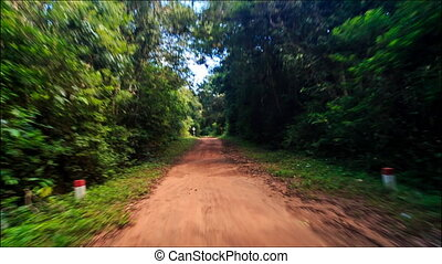 Moving along Shadow Sunny Dirt Road after Rain in Tropic Forest